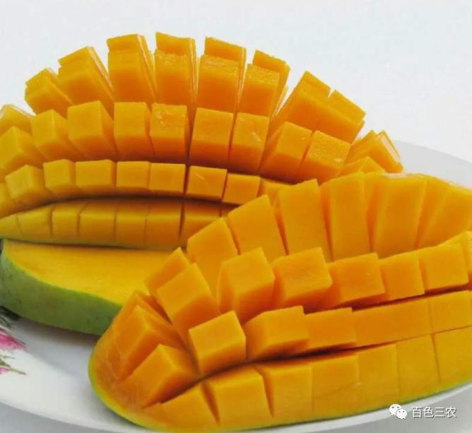 百色芒果大全来了,看你吃过哪个品种?